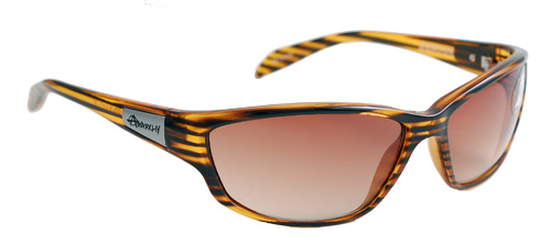 Gold and brown shaded glasses